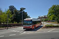 Wolfline bus makes its way around a Hillsborough Street traffic circle.