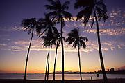 Sunset, Ala Moana Park, Waikiki, Oahu, Hawaii<br />