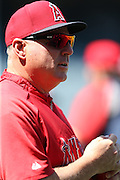 ANAHEIM, CA - APRIL 30:  Mike Scioscia #14 of the Los Angeles Angels of Anaheim has a conversation during batting practice before the game against the Cleveland Indians at Angel Stadium on Wednesday, April 30, 2014 in Anaheim, California. The Angels won the game 7-1. (Photo by Paul Spinelli/MLB Photos via Getty Images) *** Local Caption *** Mike Scioscia