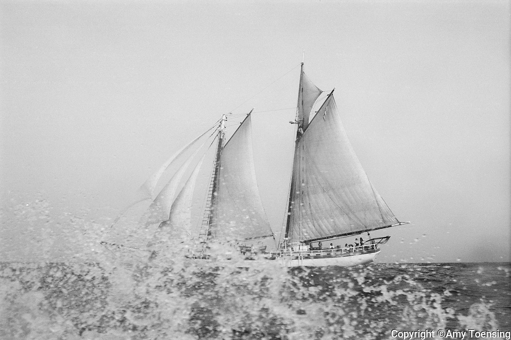 ATLANTIC OCEAN -- AUGUST 01, 1998-- The Schooner Harvey Gamage sails August 01, 1998 in the Atlantic Ocean, East Coast of the United States. (Photo by Amy Toensing/Getty Images) _________________________________<br /> <br /> For stock or print inquires, please email us at studio@moyer-toensing.com.
