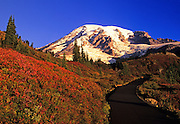 Image of Mount Rainier National Park in the fall, Washington, Pacific Northwest