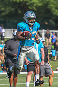 Carolina Panthers running back Elijah Holyfield (33) carries the ball down field during training camp at Wofford College, Saturday, July 27, 2019, in Spartanburg, S.C. (Brian Villanueva/Image of Sport)