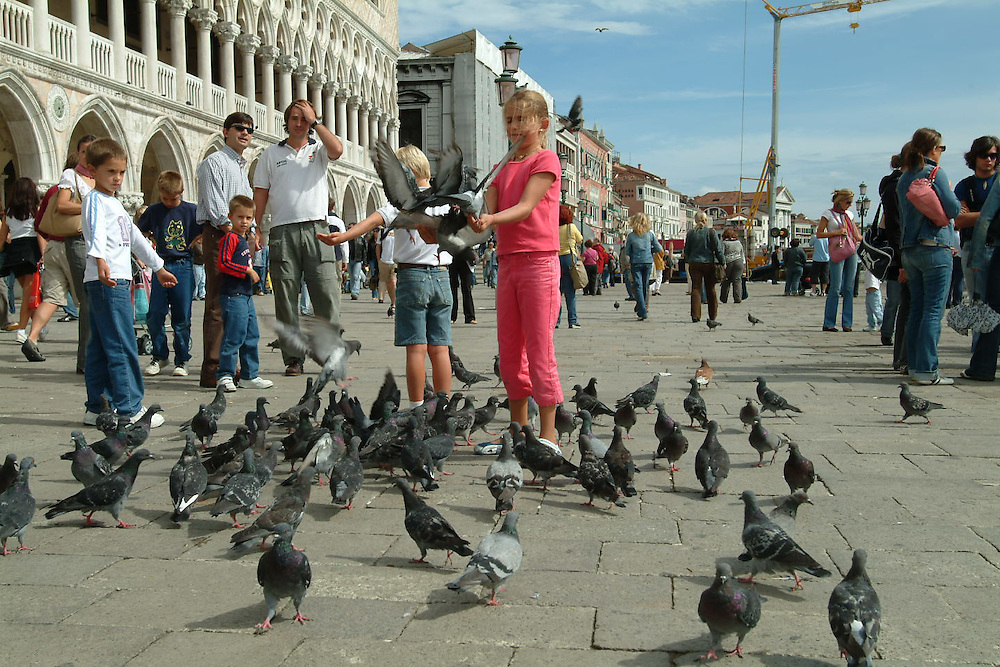Little girl feed pigeons at Basilica di Santa Maria del Fiore catherdral in Florence, Italy