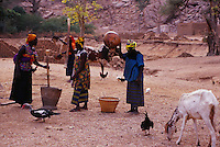 Mali,Dogon country- women at work