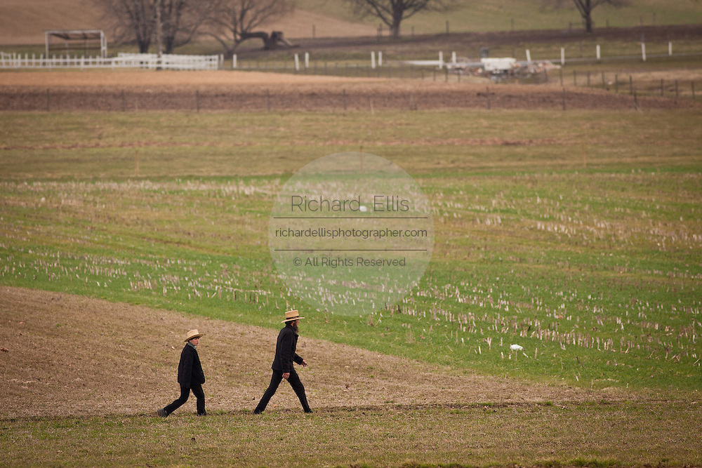 Amish father and son walk across a farm field during the Annual Mud Sale to support the Fire Department  in Gordonville, PA.