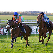 Bridle Belle and Paul Hanagan winning the 2.10 race