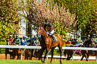 Jockeys before race, Keeneland Racecourse, Lexington, Kentucky USA.