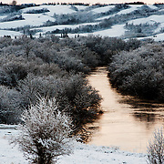 A river cuts through a winters forest in Southern Saskatchewan.