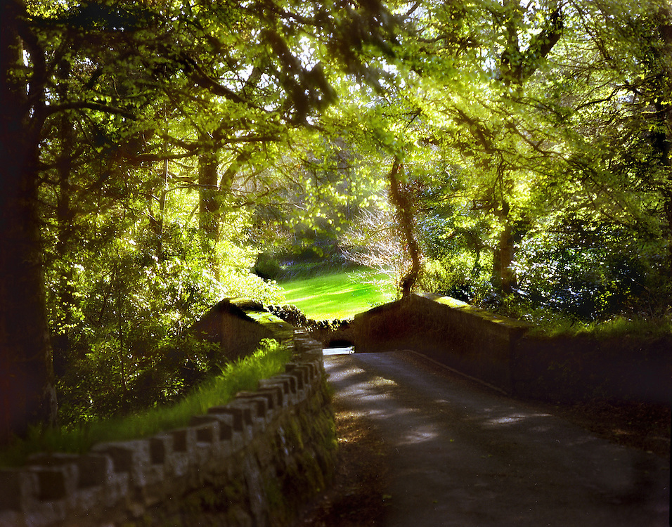 A rural country scene with view over an old bridge under the shade of leafy trees to green pasture