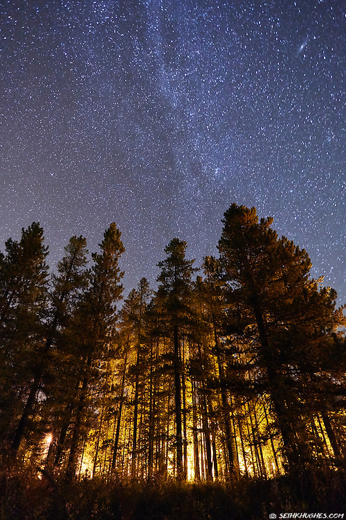 Looking up at an illuminated forest and an expansive, star-filled, night sky in Banff National Park, Alberta, Canada.