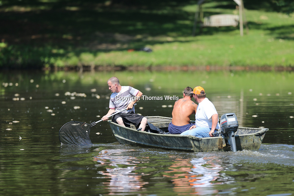 Shane Morris uses dip net from the front of the boat to pick up dead fish on the surface of the water of a small lake on Strain Street in Tupelo on Tuesday.
