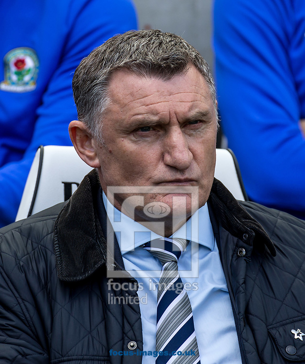 Tony Mowbray manager of Blackburn Rovers during the Sky Bet Championship match at the American Express Community Stadium, Brighton and Hove<br /> Picture by Liam McAvoy/Focus Images Ltd 07413 543156<br /> 01/04/2017