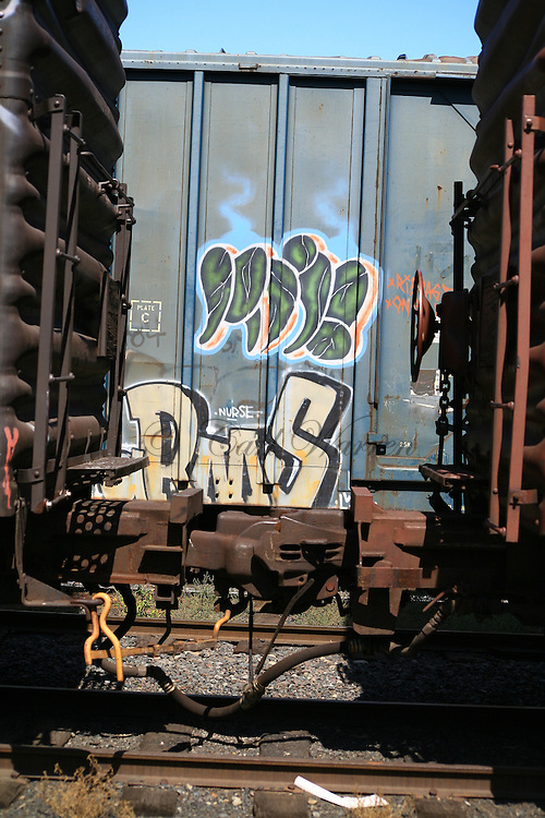 Train Graffiti in Oregon
