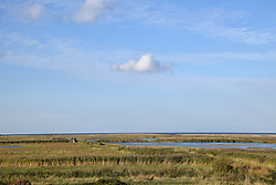 Cley Marshes, Norfolk Wildlife Trust nature reserve, Norfolk UK November 2018