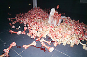 """VENICE, ITALY..June 1997..47th Biennale of Venice.Italian Pavillion..Performance """"Cleaning the House"""" by and with Marina Abramovic (Winner of 1st Price), a moving reflection on the war in ex-Yugoslavia. .(Photo by Heimo Aga)"""