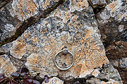 "Chain ring attached to rock. Panorama Course trail. Karasawa cirque is cradled by the Hotaka Mountains, in the ""Northern Japan Alps"" (Hida Mountains) in Chubu-Sangaku National Park, Japan. Within the cirque, two lodges provide beds and meals for hikers and climbers: Karasawa Goya and Karasawa Hutte. Also known as Mount Hotaka or Hotaka-dake, the Hotaka Mountains reach 3190 meters elevation atop Mount Oku-Hotaka, Japan's third highest peak. About 2000 meters in diameter, the cirque bottoms out at 2300 m elevation. Snow melting here forms the River Azusa which flows through Kamikochi valley below."