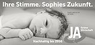 Political Campaign - Newborns