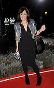 15.DECEMBER.2010. LONDON<br /> <br /> ARLENE PHILLIPS ARRIVING ON THE RED CARPET AT A NIGHT OF HEROES: THE SUN MILITARY AWARDS HELD AT THE IMPERIAL WAR MUSEUM, LONDON<br /> <br /> BYLINE: EDBIMAGEARCHIVE.COM<br /> <br /> *THIS IMAGE IS STRICTLY FOR UK NEWSPAPERS AND MAGAZINES ONLY*<br /> *FOR WORLD WIDE SALES AND WEB USE PLEASE CONTACT EDBIMAGEARCHIVE - 0208 954 5968*