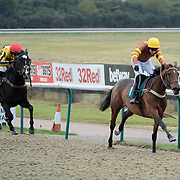 Lingfield 8th November