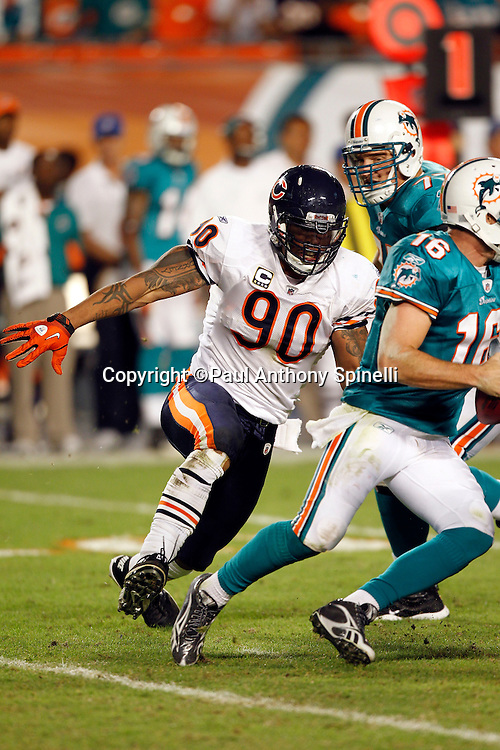 Miami Dolphins quarterback Tyler Thigpen (16) gets chased and sacked during the fourth quarter by Chicago Bears defensive end Julius Peppers (90) during the NFL week 11 football game on Thursday, November 18, 2010 in Miami Gardens, Florida. The Bears won the game 16-0. (©Paul Anthony Spinelli)