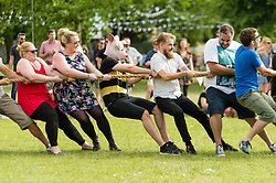 © Licensed to London News Pictures. 08/06/2014. London, UK.  Festival atmosphere at Field Day Festival 2014 - festival goers including a man wearing a pig mask compete in a game of tug-of-war.   Field Day is an annual outdoor music festival which takes place in Victoria Park in London.    Photo credit : Richard Isaac/LNP