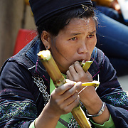 A Black Hmong women eats sugar cane at Sapa market, Northern Vietnam.  Sapa and the surrounding highlands are close to the Chinese border in Northern Vietnam and is inhabited by highland minorities including Hmong and Dzao groups. Sapa is now a thriving tourist destination for travelers taking the night train from Hanoi. Sapa, Vietnam. 16th March 2012. Photo Tim Clayton