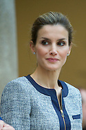 Queen Letizia of Spain attends a meeting with representatives of institutions of social solidarity at Palacio de El Pardo on June 24, 2014 in Madrid