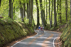 An early break reaches the forest first during of the second, 110.1km road race stage of Elsy Jacobs - a stage race in Luxembourg in Garnich on May 1, 2016.