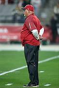 Arizona Cardinals head coach Bruce Arians watches pregame warmups before the NFL NFC Divisional round playoff football game against the Green Bay Packers on Saturday, Jan. 16, 2016 in Glendale, Ariz. The Cardinals won the game in overtime 26-20. (©Paul Anthony Spinelli)