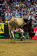 Cooper Davis riding bull Smooth Over during the 25th Professional Bull Riders  Unleash the Beast Music City Knockout in Nashville, Tenn., Friday, Aug 17, 2018. (Michelle Donovan/Image of Sport)