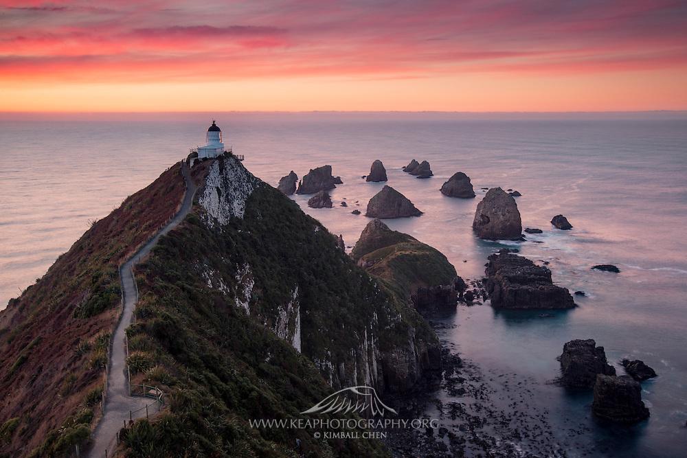 A serene sunrise awakens the wildlife nestled along the rocky headlands of Nugget Point, Catlins, New Zealand.