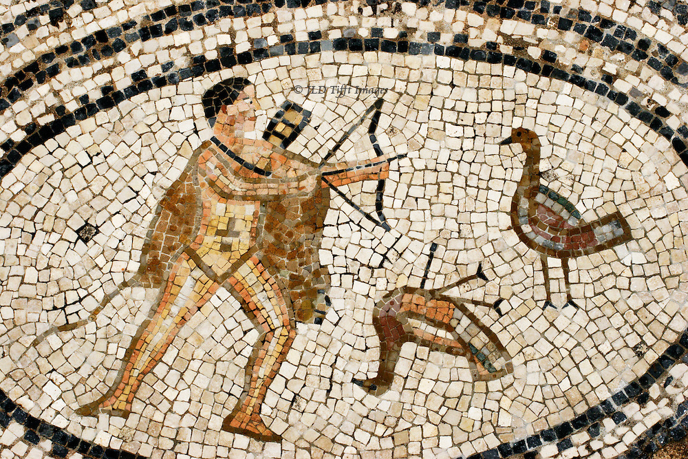 "Volubilis, ancient Roman provincial city with many floor mosiacs still in situ. Mosaic details from the ""House of Orpheus.""  Medallion showing Hercules with the Stymphalian Birds (6th labor).  Somewhat coarse provincial style."