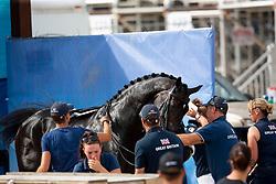 Hester Carl, GBR, Hawtins Delicato<br /> World Equestrian Games - Tryon 2018<br /> © Hippo Foto - Sharon Vandeput<br /> 15/09/2018