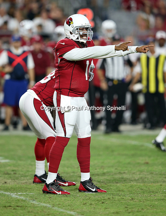 Arizona Cardinals quarterback Phillip Sims (1) points toward the defense as he grits his teeth during the 2015 NFL preseason football game against the San Diego Chargers on Saturday, Aug. 22, 2015 in Glendale, Ariz. The Chargers won the game 22-19. (©Paul Anthony Spinelli)