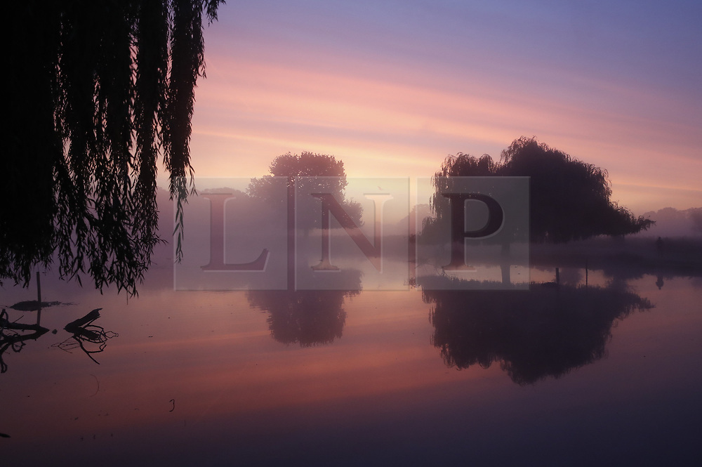 © Licensed to London News Pictures. 03/10/2019. London, UK. The sun rises over a misty Bushy Park. A cold clear day is expected in parts of the UK today. Photo credit: Peter Macdiarmid/LNP