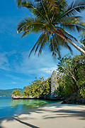 Idyllic white sand beach, framed by coconut palm and studded by an impressive karst tower. Surangga, Triton Bay, Papua