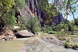 Virgin River Valley, Zion National Park, Springdale, Utah, USA