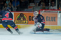 REGINA, SK - MAY 25: Max Paddock #33 of Regina Pats defends the net during first period against the Hamilton Bulldogs at the Brandt Centre on May 25, 2018 in Regina, Canada. (Photo by Marissa Baecker/CHL Images)