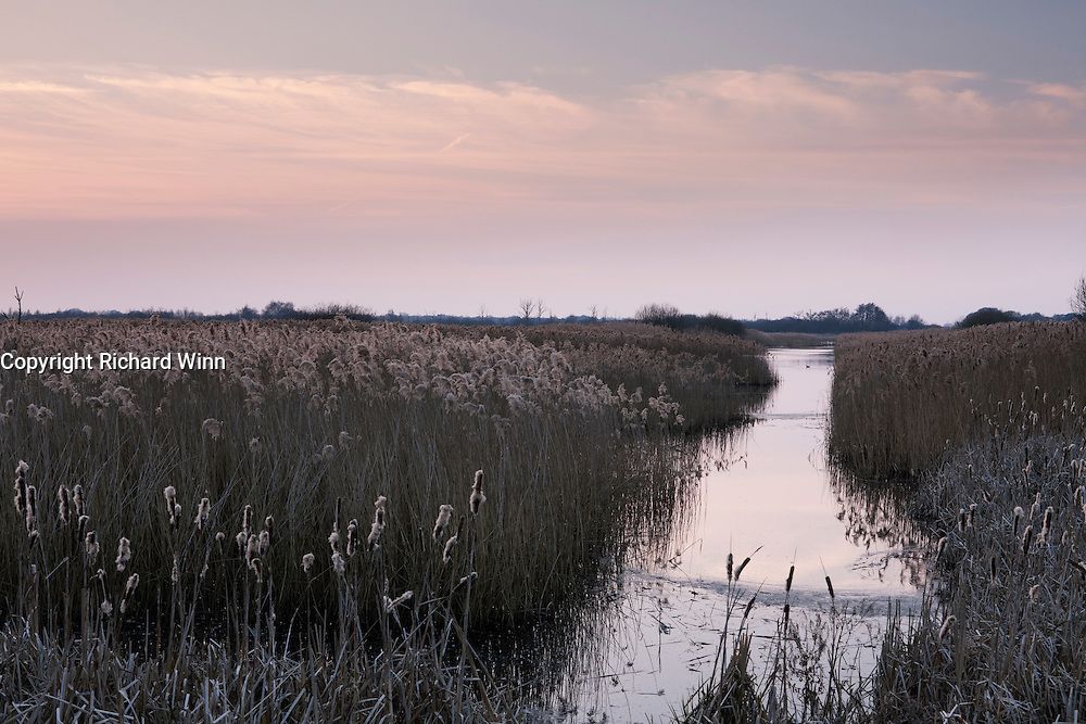 Late evening on the  edge of Noah's lake on teh Shapwick Heath Nature Reserve, showing one of the many channels.