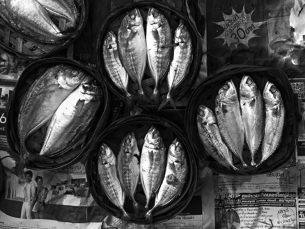 Fish at the morning market in Vientiane, Laos.