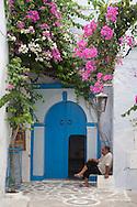 the old city , The MEDINA, the souks  Hamameth - Tunisie  .///.la medina, la vielle ville, le souk  Hamameth - Tunisie .///.TUNIS212A