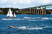 Spruce and Ahab participating in The Classic Cup powerboat rally.