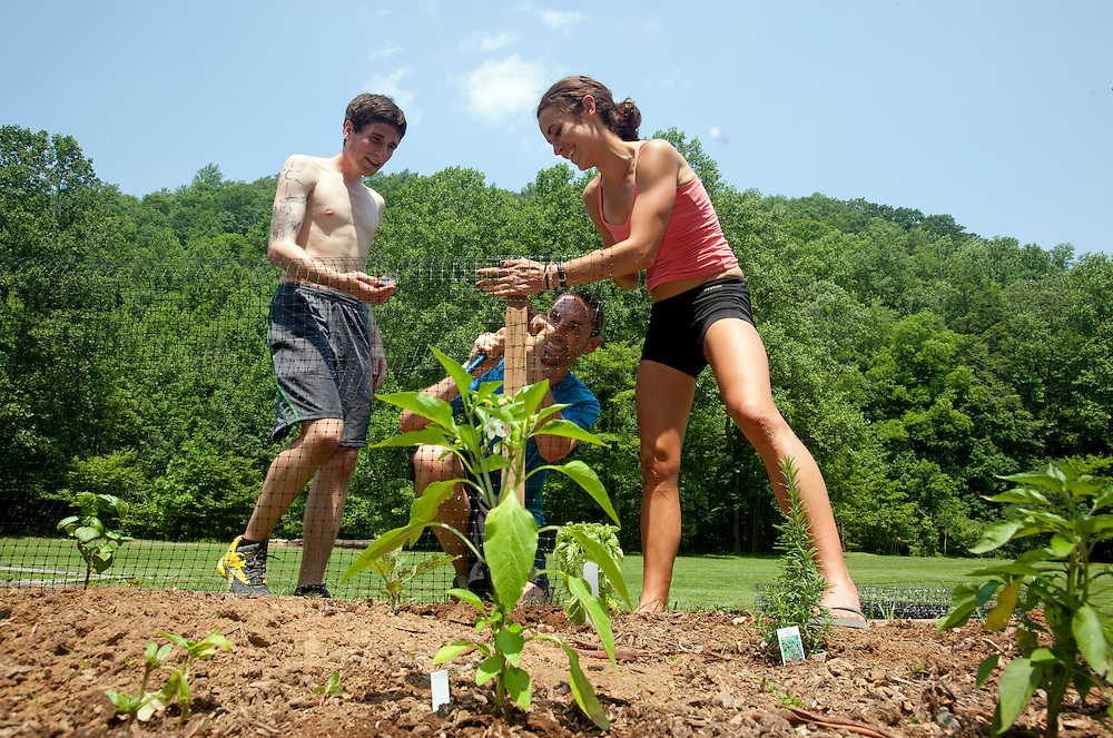 Zap Fitness athletes Jesse Cherry, Dave Jankowski and Alissa  McKaig build a fence around an herb garden at the training center. Zap athletes spend Wednesdays doing outdoor chores..