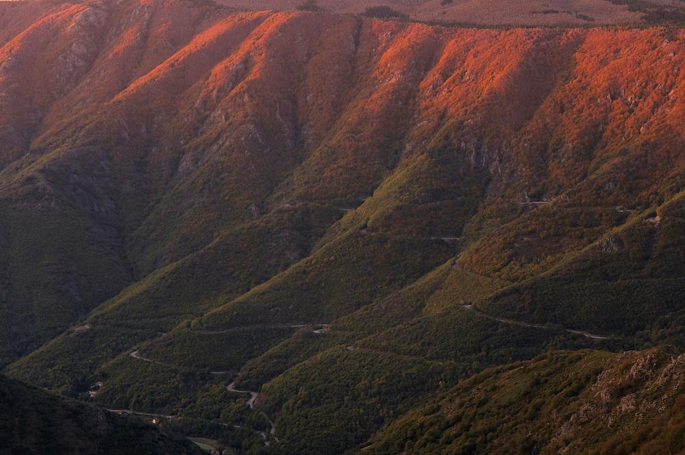 France, Languedoc Roussillon, Gard, Cévennes, massif de l'Aigoual, Montagne de l'Espérou
