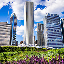 Photo of Chicago skyline and Lurie Garden flowers in Millennium Park. Picture is high resolution and was taken in May 2012.