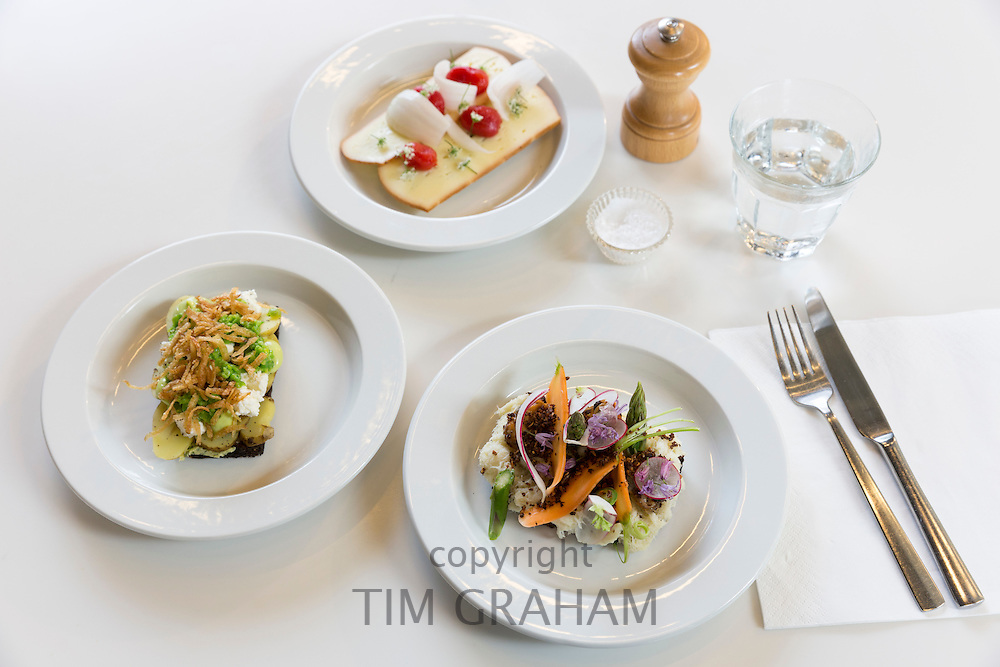 Lunch snacks Smorrebrod - smorgasbord Nordic open sandwich on minimalist white china plates and place setting, Denmark