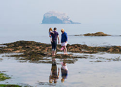 Family exploring rock pools on beach at North Berwick  with Bass Rock in the distance, in East Lothian, Scotland , United Kingdom.
