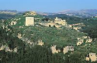 Syrie - Château de Saône