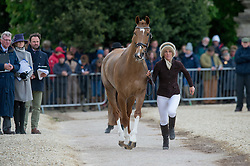 Powell Caroline, (NZL), Onwards And Upwards<br /> First Horse Inspection - Mitsubishi Motors Badminton Horse Trials <br /> Badminton 2015