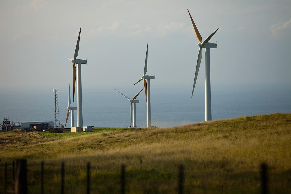 Big Island, North Kohala, Upolu Point, Wind Farm